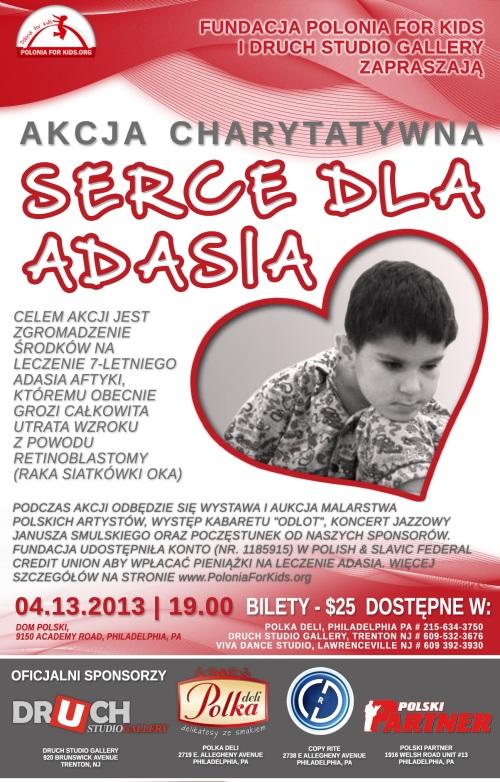 p4k.adas.2013-3